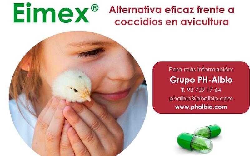 Eficacia comparada de eimex vs amprolio frente a coccidios
