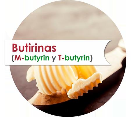 Butirinas (T-butyrin y M-butyrin)