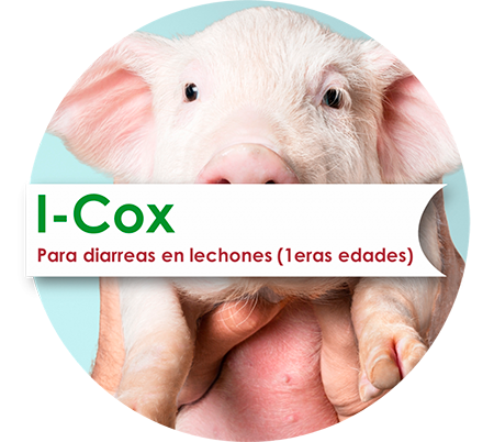 I-Cox