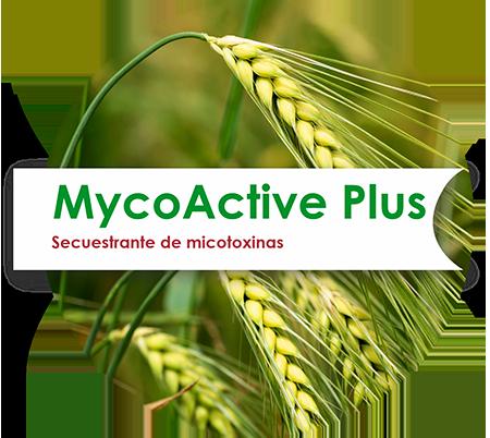 MycoActive Plus
