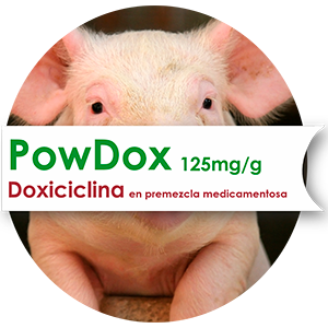 Powdox